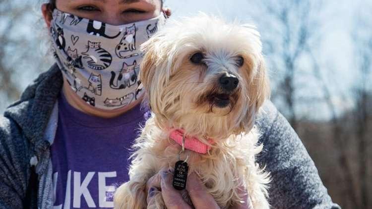 Volunteer holding puppy