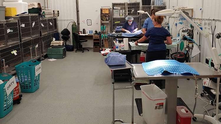 RSR Surgical suite