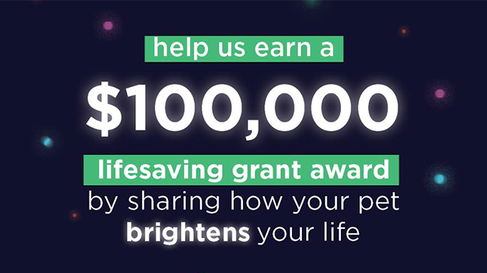 $100,000 Holiday Wishes Grant Campaign 2020