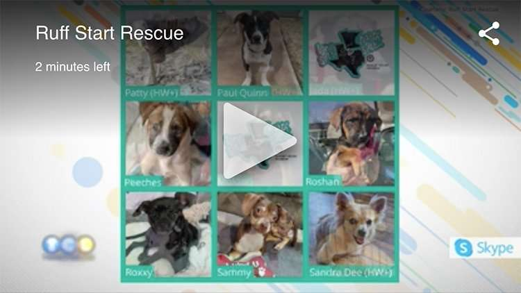 Twin Cities Live Ruff Start Rescue Video