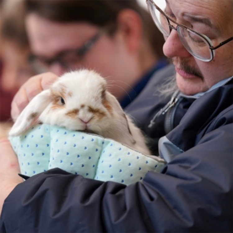 Foster holding a bunny rabbit