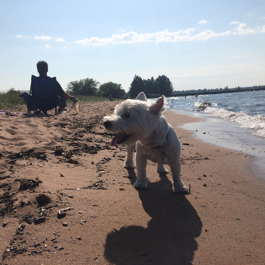 chad and rocco on the beach